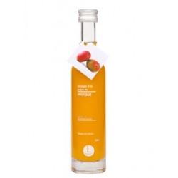 Vinaigre mangue